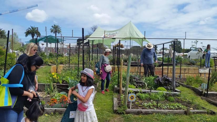 WL Community Garden